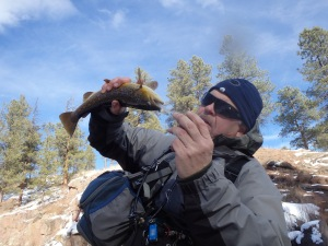 Scott Thompson pumping a fish in January.